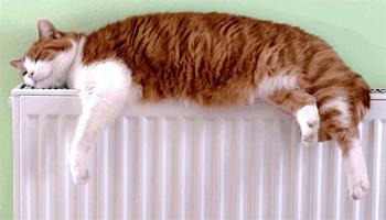 разводка отопления - радиатор